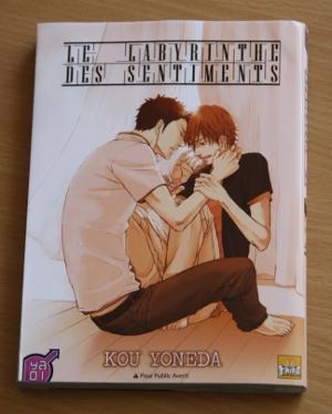 """Manga """"Le labyrinthe des sentiments"""""""